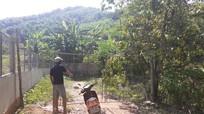 Thông tin thêm về vụ chặn đường tuần tra rừng để thu phí ở Nghệ An