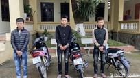 Nghệ An: 3 thanh niên bốc đầu xe để khoe 'chiến tích' trên TikTok bị phạt hơn 30 triệu đồng