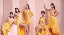 Ngắm nhan sắc các người đẹp Hoa hậu Hoàn Vũ Việt Nam