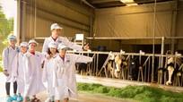 'Mong ngày càng nhiều trẻ em được thụ hưởng chương trình sữa học đường'