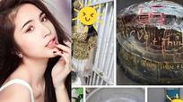 Thủy Tiên lại gây ồn ào khi khắc tên gia đình lên mai rùa để phóng sinh