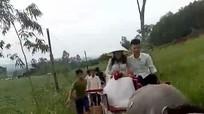 Chú rể Nghệ An chia sẻ về màn đón dâu bằng xe trâu ngày mưa