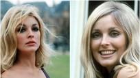 Ba người đẹp Hollywood cùng vào vai mỹ nhân bị ám sát lúc mang thai