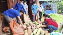 Bà con vùng cao Nghệ An gom góp nông sản hỗ trợ vùng tâm dịch