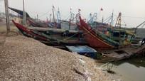 Cử tri huyện Diễn Châu mong muốn sớm nâng cấp cảng cá Lạch Vạn