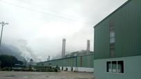 Công ty TNHH chế biến nông sản Hoa Sơn: Sản xuất gắn với bảo vệ môi trường