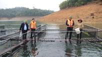 Phó Chủ tịch UBND tỉnh kiểm tra sản xuất nông lâm, thủy sản tại huyện Quế Phong