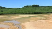 Nghệ An: Nhiều hồ chứa khô cạn, lúa hè thu thiếu nước tưới trầm trọng