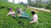 Chủ tịch UBND tỉnh lưu ý 4 nhiệm vụ phối hợp giữa hội nông dân và chính quyền các cấp