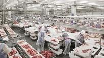 50.000 tấn thịt lợn đổ về, dân Việt được mua giá rẻ