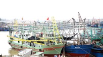 Nghệ An sẽ xây dựng cảng cá Lạch Quèn 200 tỷ đồng