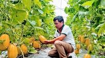 Hộ gia đình có vườn chuẩn nông thôn mới sẽ được thưởng 15 triệu đồng