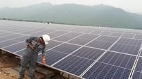 Dừng mua điện mặt trời mái nhà, nghìn ông chủ đứt tiền