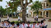 Những điều cần biết về kỳ thi tuyển sinh lớp 10 năm nay ở Nghệ An