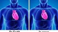 Khám phá 10 sự thật về cơ thể người