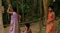 Căn bệnh bí ẩn khiến nhiều thổ dân Malaysia tử vong