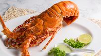 Tôm hùm bông Việt Nam trong top ba loại tôm hùm giàu dinh dưỡng