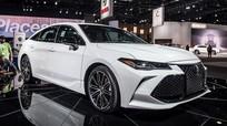 Toyota Avalon 2019 - sedan cao cấp tiệm cận Lexus