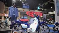 Chi tiết Honda C125 - biến thể Super Cub hiện đại