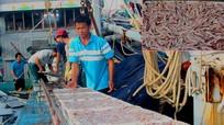 Ngư dân Nghệ An mở biển đầu năm trúng hàng trăm tấn cá trỏng
