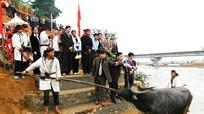 Nghi lễ chém trâu trong lễ hội Đền Chín gian