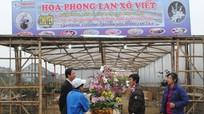 Trầm lắng chợ hoa Tết Tân Mão