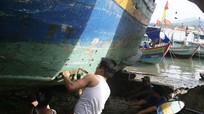Ngư dân Quỳnh Phương vững vàng bám biển