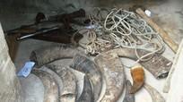 Công an Tân Kỳ: Phá đường dây trộm trâu bò