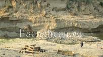 Ngăn chặn triệt để nạn khai thác vàng trái phép dọc sông Nậm Mộ (Kỳ Sơn)