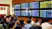 Chính phủ ban hành Nghị định về điều kiện chào bán cổ phiếu riêng lẻ