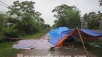 Quỳnh Lưu: Một lái xe taxi bị giết trong đêm