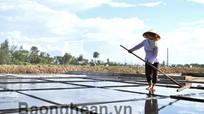 Khó khăn việc nhân rộng mô hình sản xuất muối sạch ở Diễn Châu