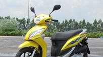 Xe Honda Việt Nam đồng loạt hạ giá