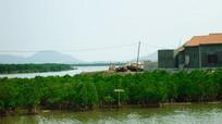 Hạn chế ảnh hưởng của biến đổi khí hậu đến nuôi trồng thủy sản