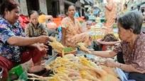 FAO cảnh báo nguy cơ tái bùng phát dịch cúm H5N1