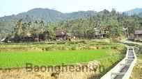 Quế Phong: Thiếu nước tưới vụ xuân
