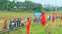 TX Thái Hòa: Ra quân chiến dịch thanh niên tình nguyện hè