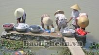 Dự án cấp nước sạch và vệ sinh môi trường tại Diễn Yên chậm tiến độ
