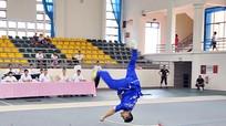 Khai mạc Giải vô địch Cup Wushu toàn quốc năm 2013