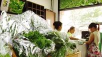 Khắp nơi kinh doanh thực phẩm sạch