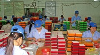 Cần đảm bảo chính sách thai sản cho lao động nữ trong các doanh nghiệp