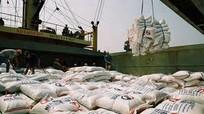 Giá gạo xuất khẩu tăng đáng kể trong tháng 11