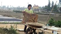 Quỳnh Lưu: Đưa công nghệ vào sản xuất muối sạch