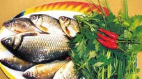10 loại cá bổ dưỡng bạn nên ăn