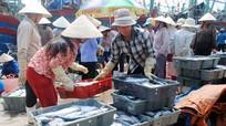 Quỳnh Phương: Sản lượng khai thác hải sản đạt gần 6 nghìn tấn