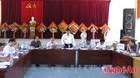 Lãnh đạo huyện Anh Sơn kiểm tra xây dựng NTM ở xã Hùng Sơn