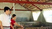 Kích cầu đầu tư cho nông dân ở Tân Kỳ