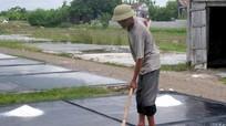 Hiệu quả sản xuất muối trải bạt