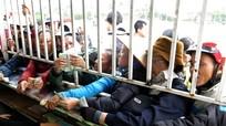 'BTC không trục lợi từ việc tăng giá vé xem đội tuyển Việt Nam'