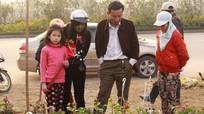 Khởi động chợ hoa Tết thành Vinh
